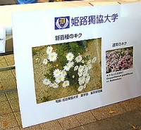 姫路食博での展示